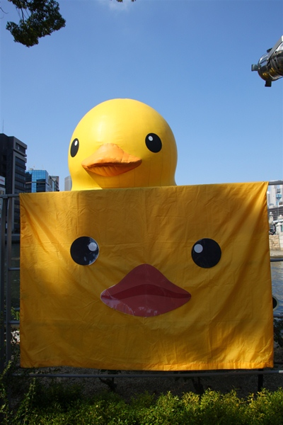 floatingduck_111.jpg
